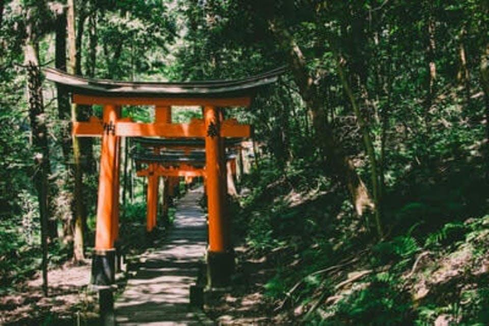 茨城で御朱印を貰える神社と関係の深い場所