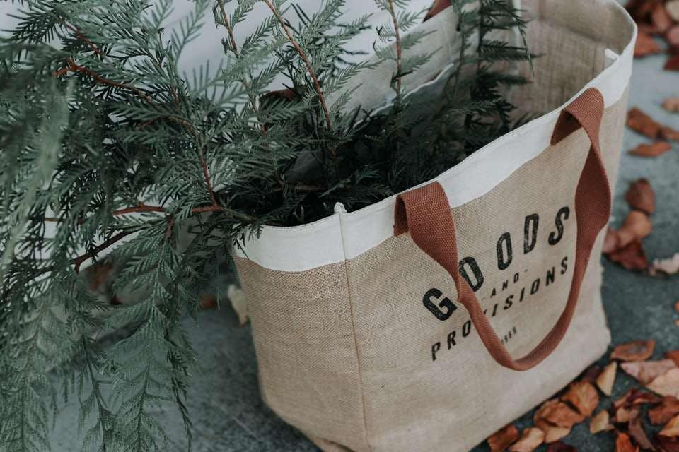 100均エコバッグと植物