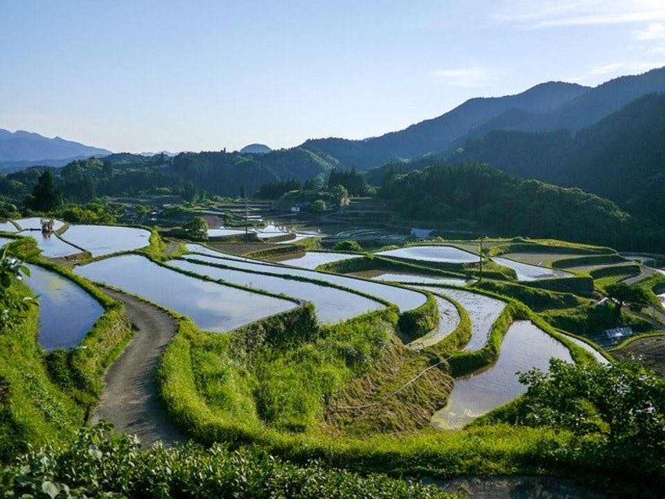 御朱印のたびにおすすめの熊本の田園風景