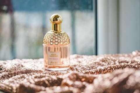 Medium photo of perfume bottle 1961792  1