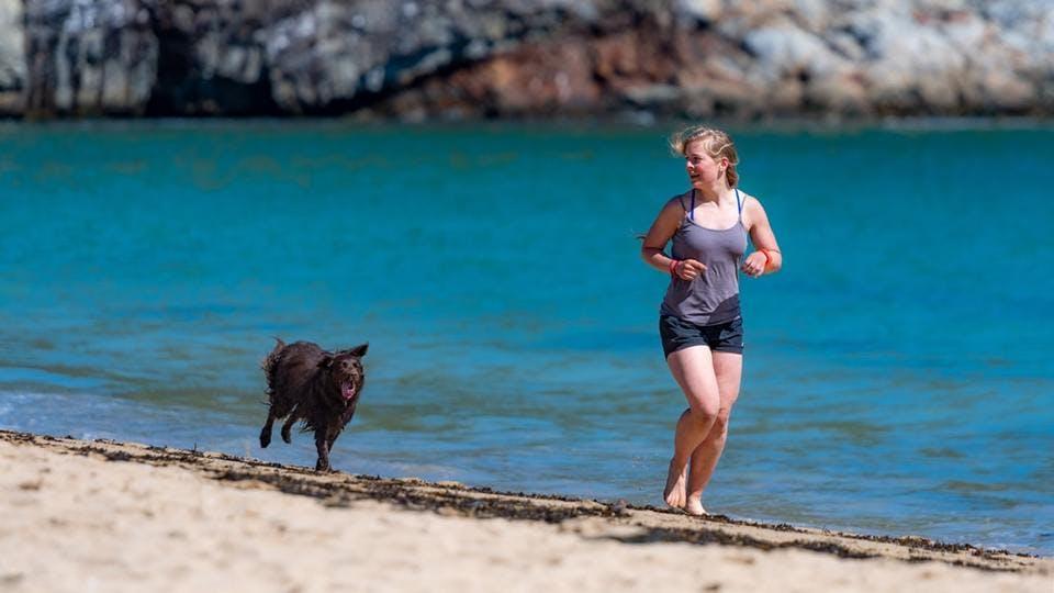 ランニング用ブラを着て犬と走る人