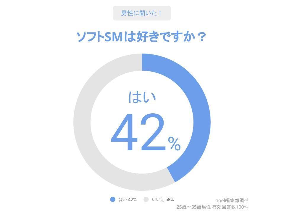 グラフ_ソフトSMは好きですか?男性100人へのアンケート