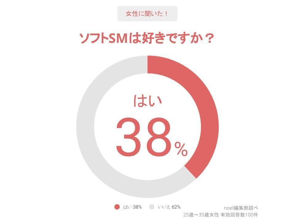 グラフ_ソフトSMは好きですか?女性100人へのアンケート