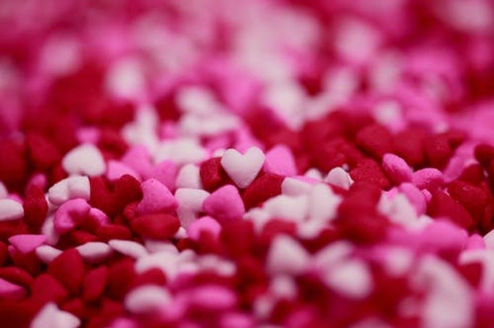 カルミア花言葉ピンクと白