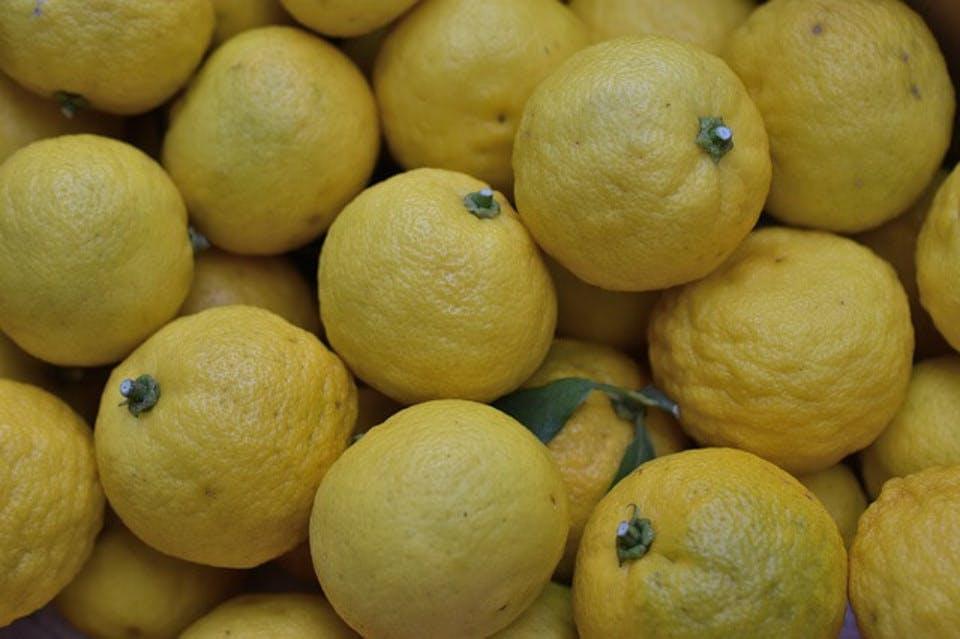 花言葉柚子の種類