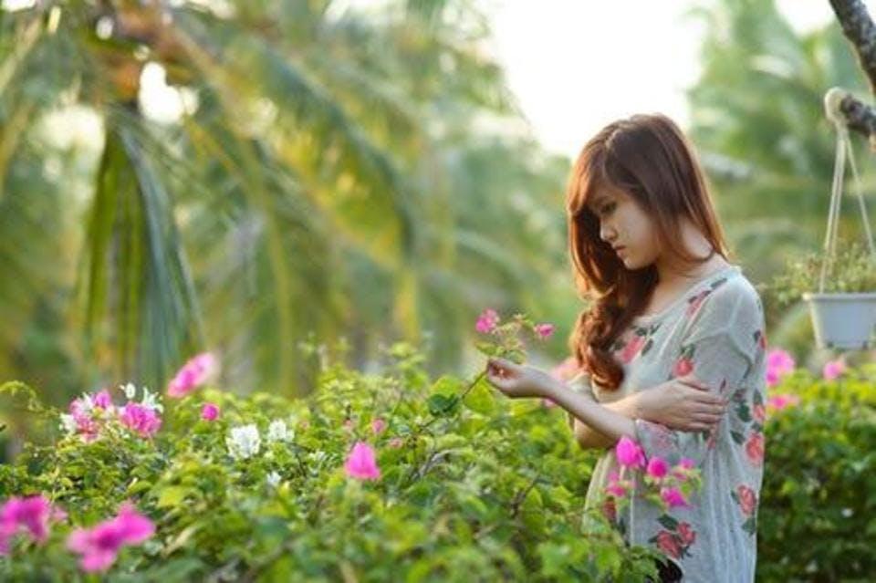 柚子の花言葉 健康