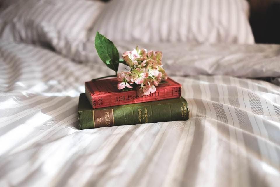 ほおずきの花言葉4選をご紹介|怖い花言葉やプレゼントするなら?