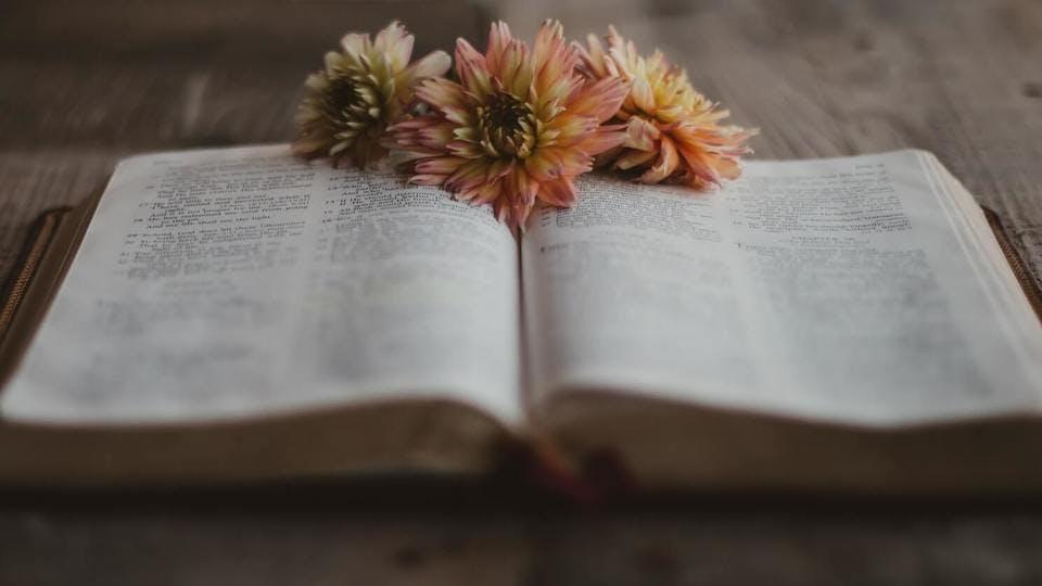 ほおずきの怖い花言葉が載っている本